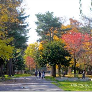 常磐公園の紅葉