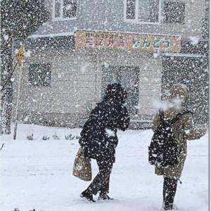 雪の日に・・・/ブログ記事上で「F2キー」 を押してみて!