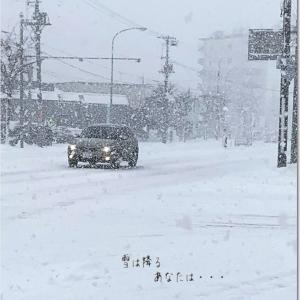 ♪ 雪が降る・・・あなたは