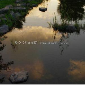 夕暮れ時の公園/台風10号