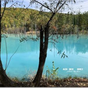 久々の 「青い池」