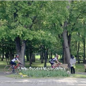 木陰でひと休み