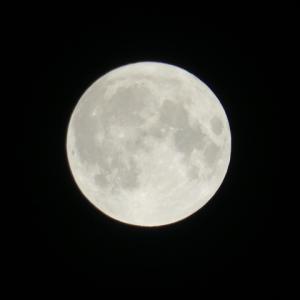 明日は、フロストムーン満月!!