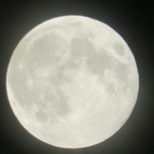 満月と浄化と岩塩