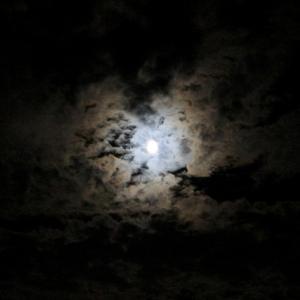 6/25 山羊座満月〜一人一人が自分に繋がって、みんなで一緒に向かう先は
