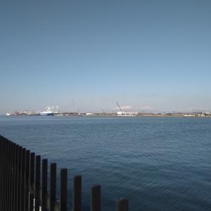 3回連続ボウズの苫西港でした
