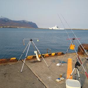 岩内港でサビキ釣り