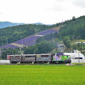 JR北海道DE15「富良野・美瑛ノロッコ号」(ラベンダー畑[臨]~西中間)