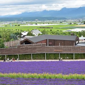 JR北海道DE15(快速富良野・美瑛ノロッコ号/ラベンダー畑駅付近)