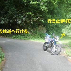 美郷町の林道ツーリング・2