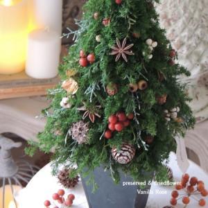 #クリスマスツリー販売のお知らせ