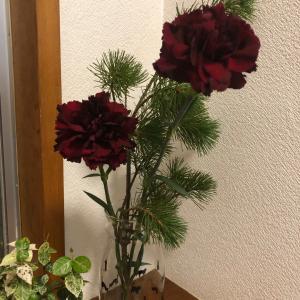 お花を長持ちさせる?裏技。