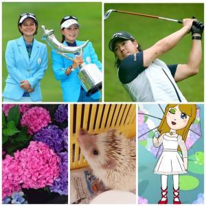 【女子ゴルフ+ハリポタ君とママ+梅雨+紫陽花+ししとうにて~♪】