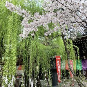 """広島で開講されました""""色相環でわかる色と数字の関係"""""""