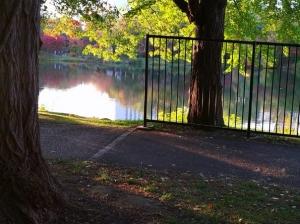 秋の日に、バルビローリ指揮VPOによる、ブラームスの交響曲第2番を聴く(附:秋の中島公園2020)