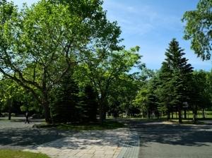 中島公園の花々(2021年6月13日)
