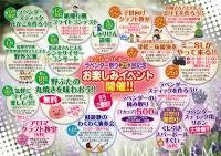 第25回ラベンダー祭り開催!!
