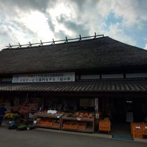 道の駅酒谷  棚田そば