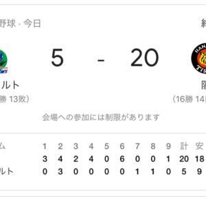 阪神20点