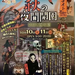 10月の京都市動物園夜間開園