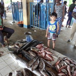 クリビの魚市場