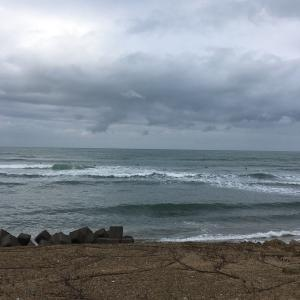 SURF123.124