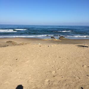 SURF144