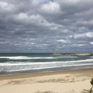 SURF145