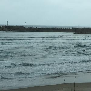 SURF157
