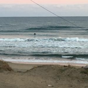 SURF12.13