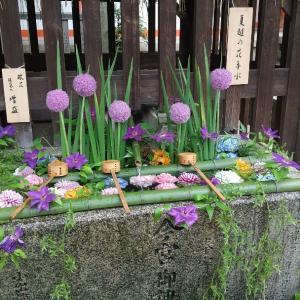 インスタ映えの 夏越の花手水 今宮神社