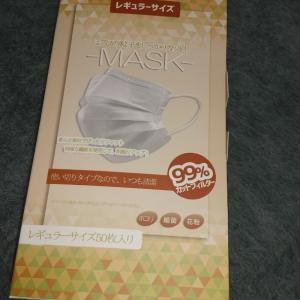 リクルートポイントで買ったマスク