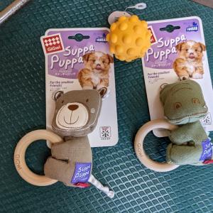 おもちゃをもらって大はしゃぎ