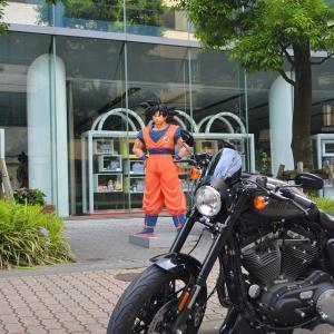 バイクで散歩