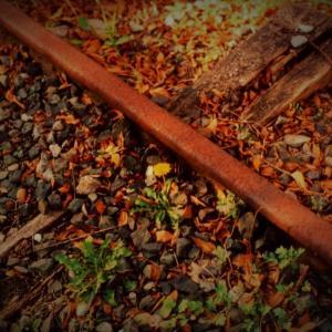 哲学の線路 廃線のタンポポ