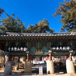 2020➀初詣in釜山2泊3日♡ ~それでは、梵魚寺(ポモサ)です!!