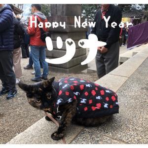 新年★やっと投稿〜w