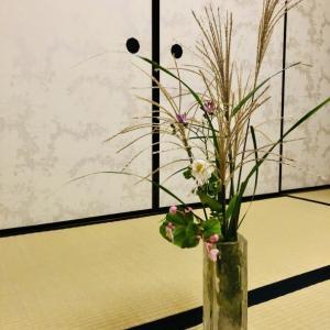 秋の草花 ススキ