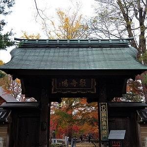 浄眞寺(九品仏)の紅葉