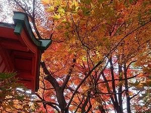 穴八幡宮(新宿区)