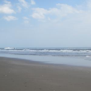 「若葉潮浜辺に人のなかりけり」