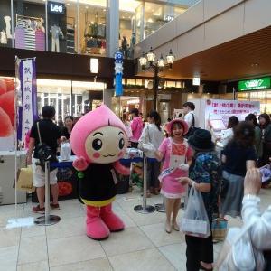 【イベント】1/18(金)〜1/19(土)JR仙台駅で桑折町観光PRをしてくるよ!