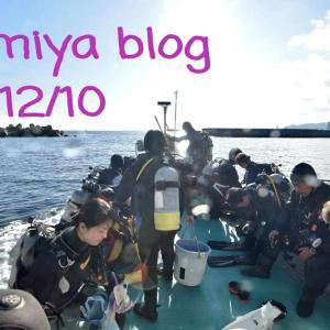 12月8日の熱海沈船ツアー!