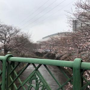 町田市 JR成瀬駅前 レンタルスタジオSOPIC