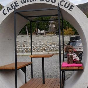 """CAFE with DOG """"CUE""""に行ったよ!"""
