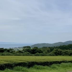 丘から見える景色