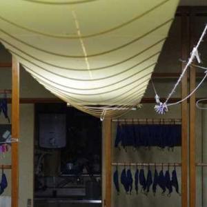 ウルシ染料を絹に刷毛染め