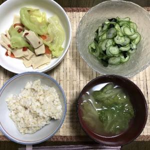 高野豆腐とキャベツの煮物ときゅうりの酢の物
