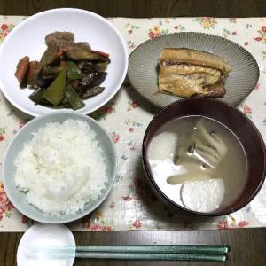 豚肉と野菜の味噌炒めと焼塩サバ