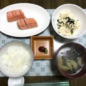 厚揚げの味噌マヨ和えとサーモンの刺身